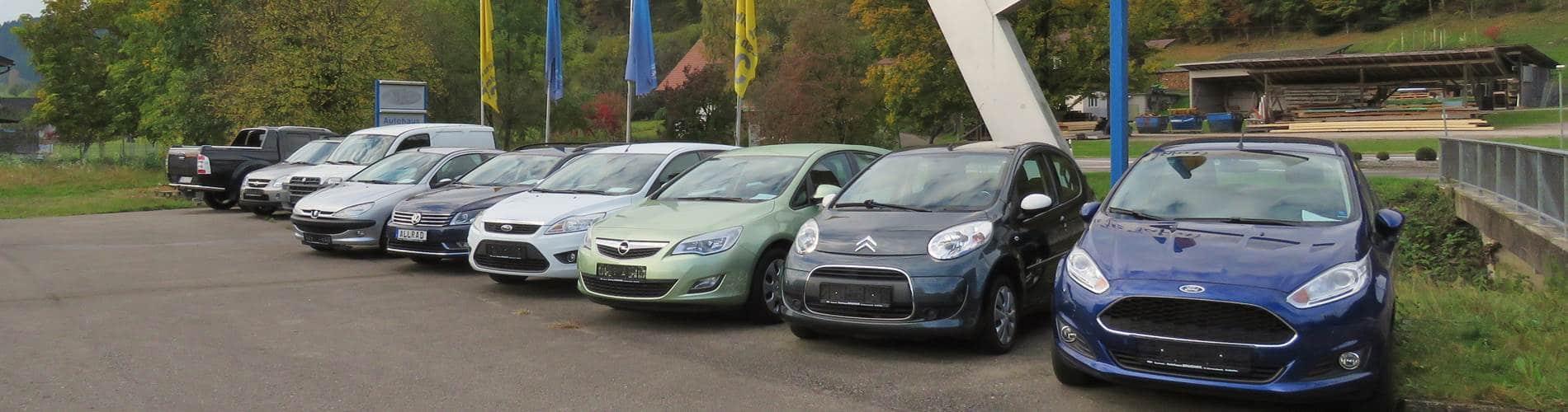 Fahrzeuge Autohaus Brucher Nordrach